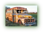 1953 short Ford Bus right