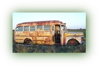1953 short Ford Bus right side